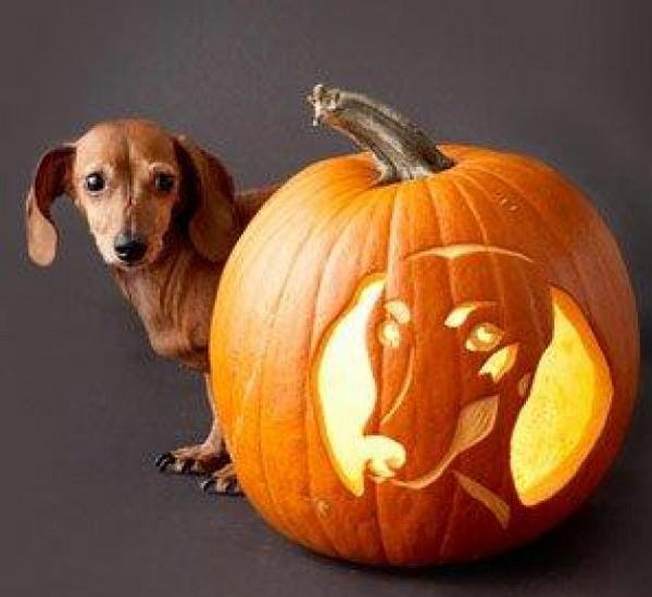 Cool-Easy-Pumpkin-Carving-Ideas